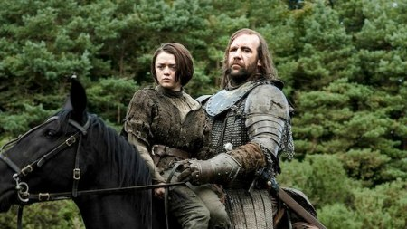 arya-the-hound